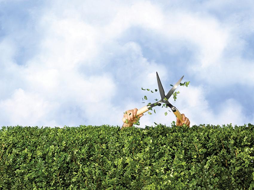 A Hedge Too Far